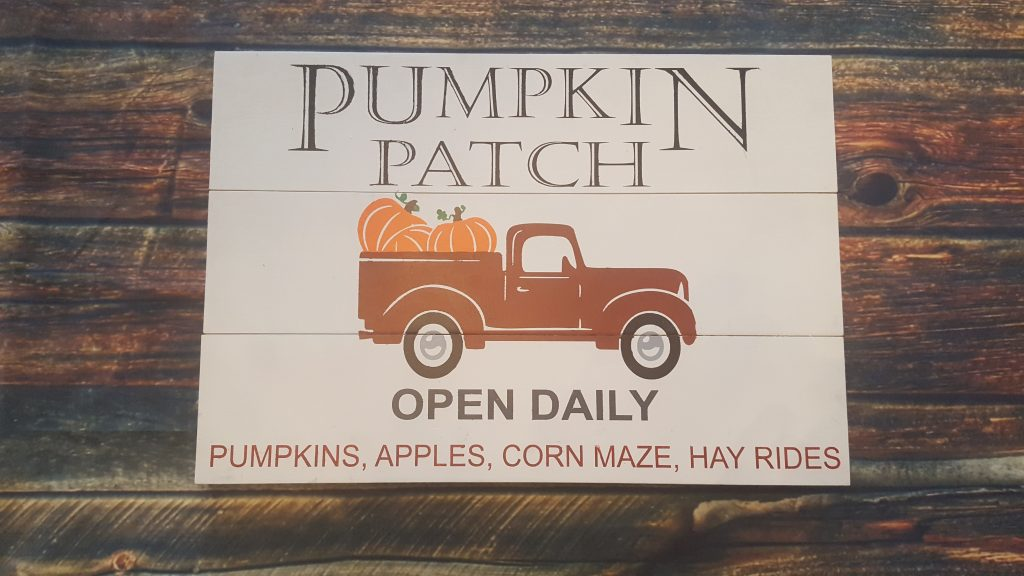 360 - Pumpkin Patch with Truck